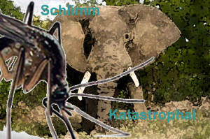 schlimm und katastrophal mücke und elefant